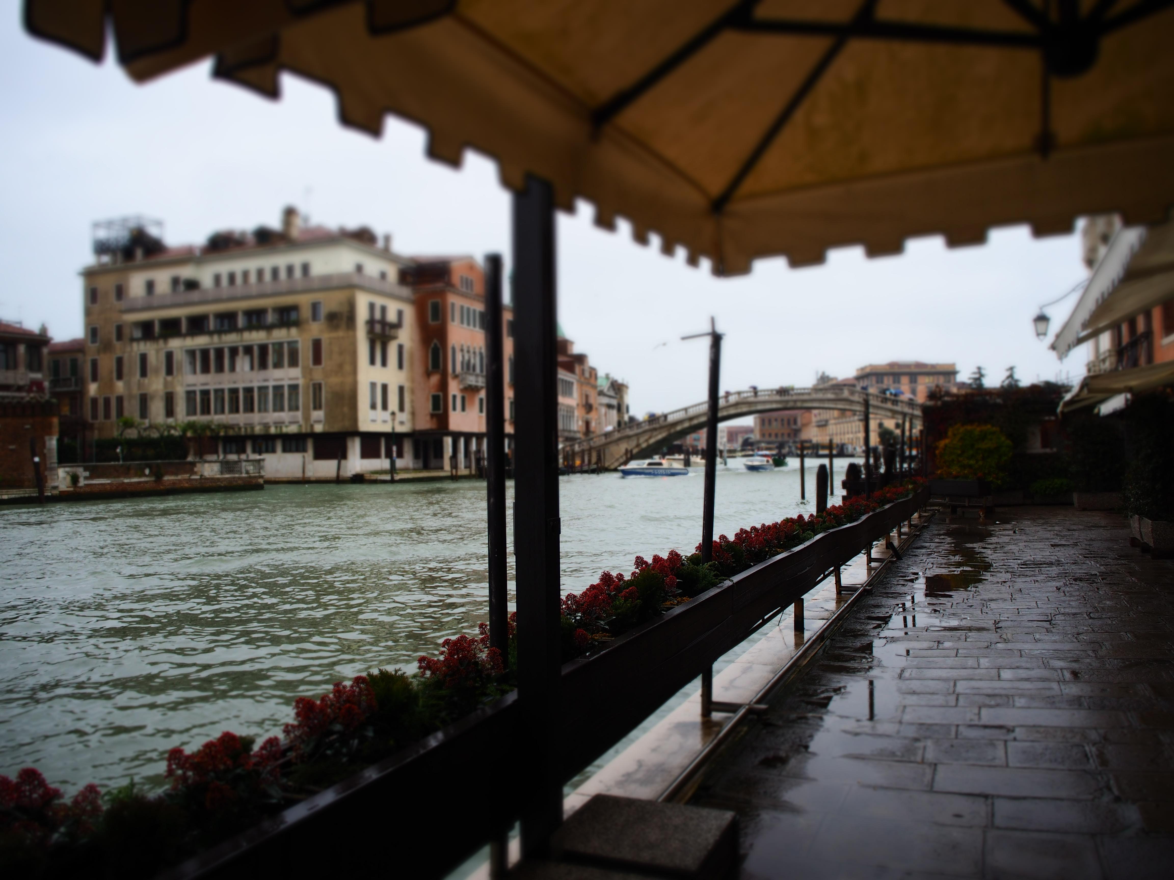 新婚旅行 イタリアへの旅 〜ヴェネツィア・テッセラ空港からの帰国編〜
